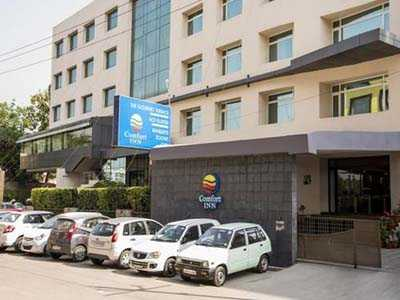 Call Girls in Comfort Inn Lucknow